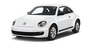 Beetle_350x180